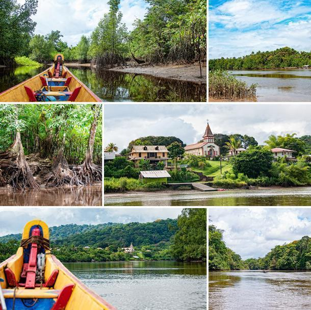 Navigating the rivers and criques by pirogue in French Guiana