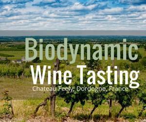Biodynamic Wine Tasting at Chateau Feely, Dordogne, France