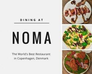 Dining at Noma, the World's Best Restaurant in Copenhagen, Denmark