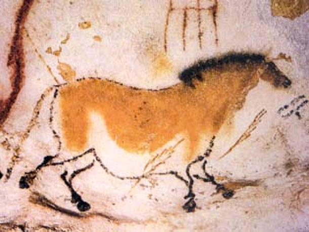 Detail of a horse painting in the Lascaux Caves.