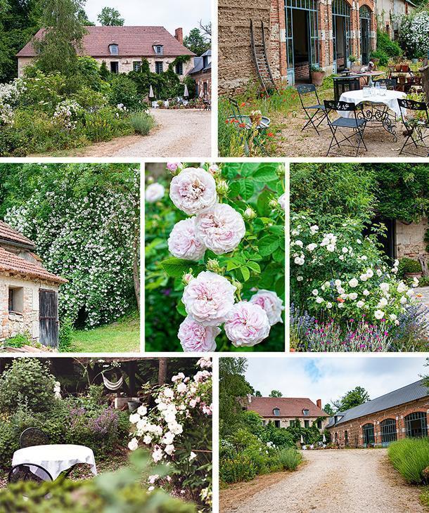Lynn's beautiful gardens sprawl over the property