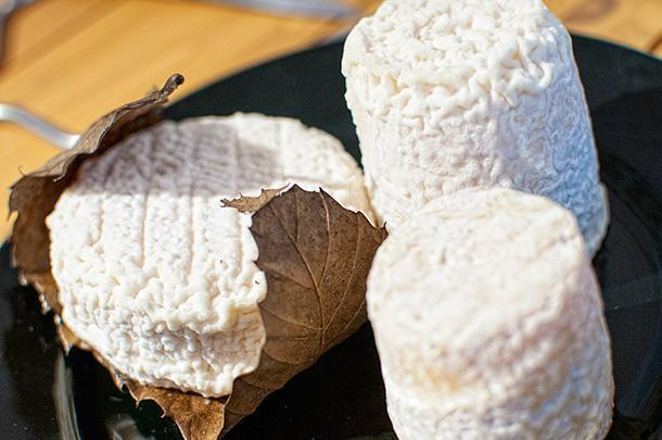Chabichou and Mothais sur Feuille cheeses, in Celles-Sur-Belle, France