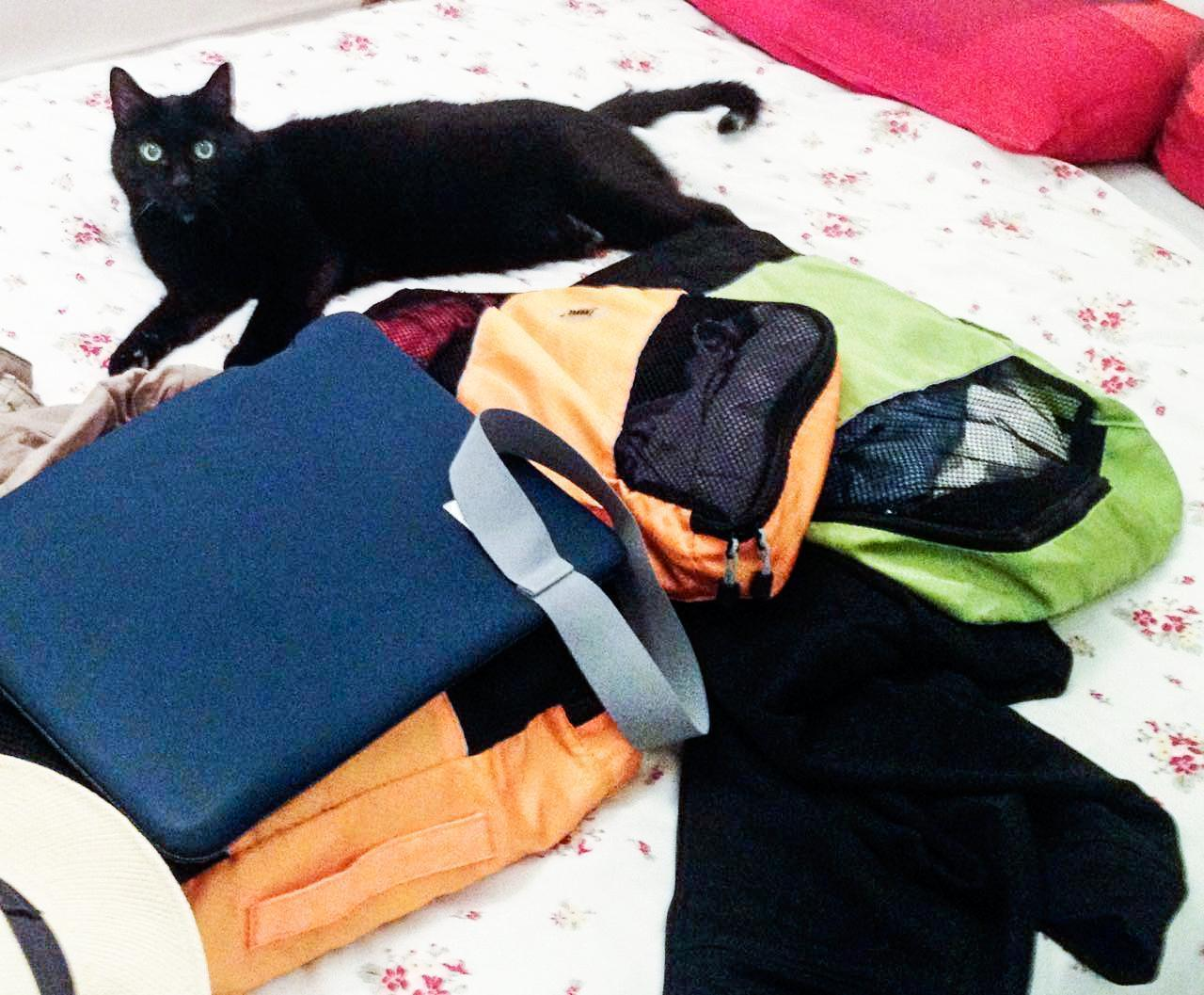 Our eBags have traveled the world (Buddy cat for scale).