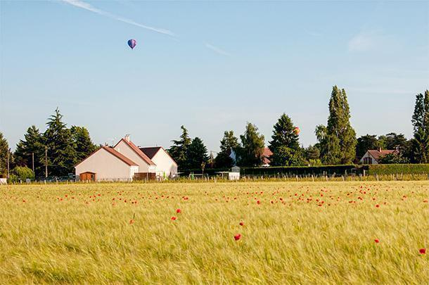 Hot air balloons and poppies in Centre, France