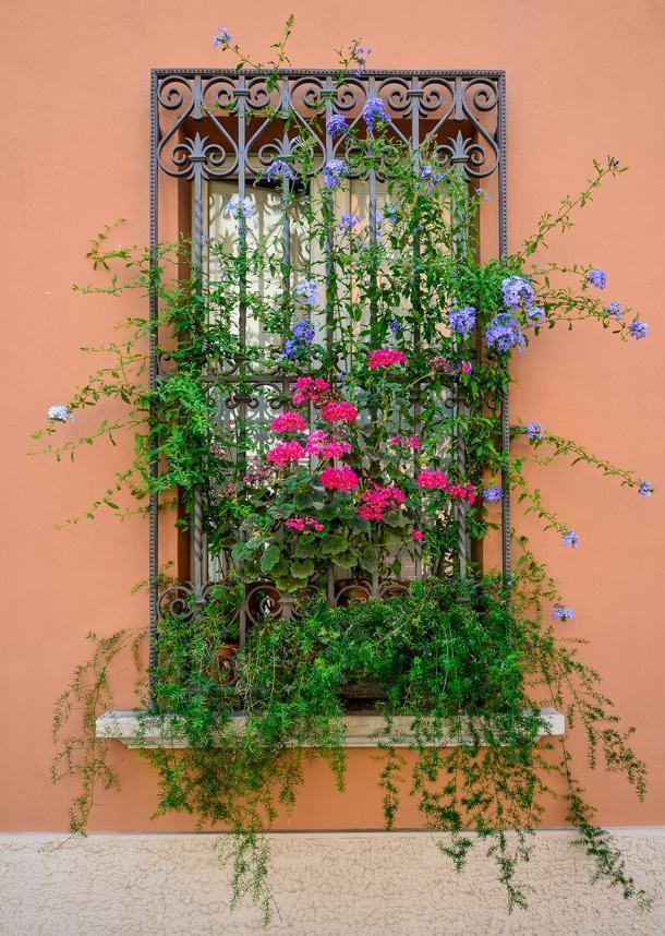 A pretty window in Ravenna, Italy