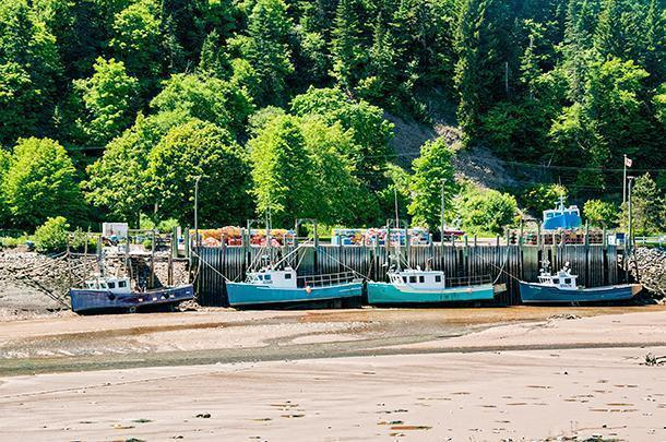 At low tide the boats sit on the ocean floor