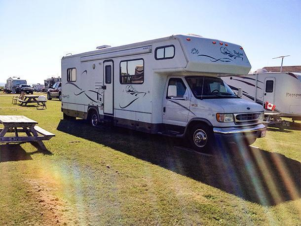 Yeti enjoying a sunny evening at Century Farms Campground in St. Martins