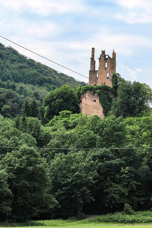 You never know what sights you might see while cycling through Eifel, Germany