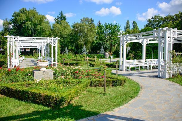 Take a deep breath at Roses Park in Timisoara
