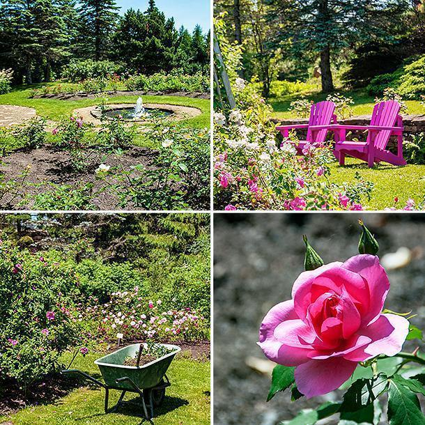 The Rose Garden is a sensory (and scent-sory) experience.