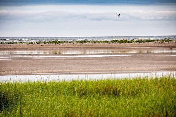It may have been cloudy but Kellys Beach was still beautiful when we visited Kouchibouguac