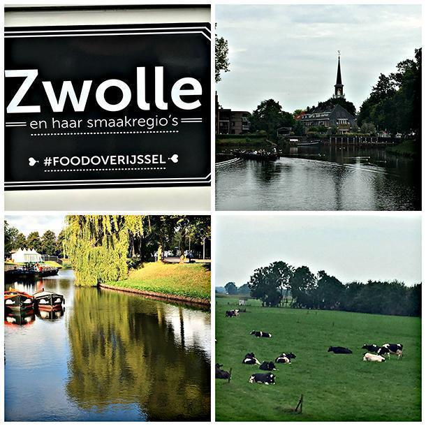 Zwolle with its parks, lakes, and dairy farms!