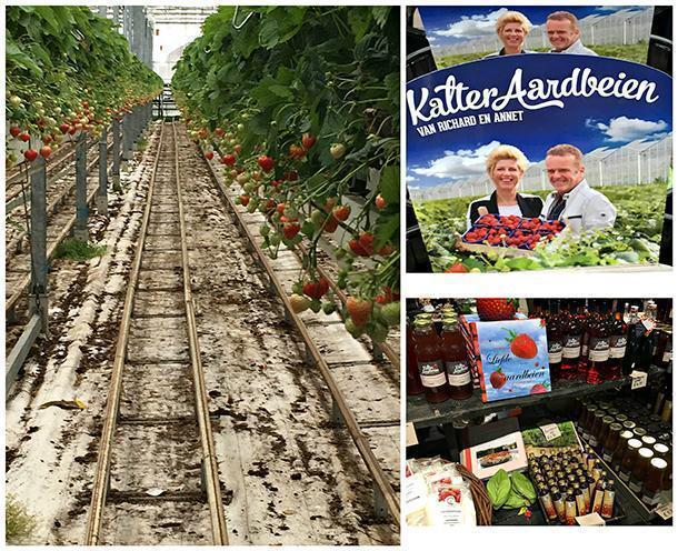 Richard and Annet Kalter's strawberry farm and the artisanal products