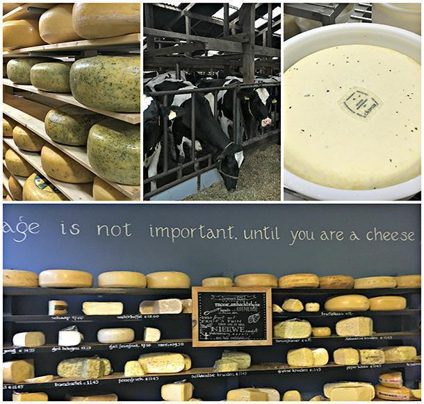 You cannot be far away from cheese in Holland, can you?