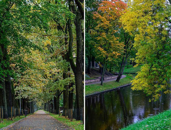 Fall foliage is a sight to see in Riga, Latvia