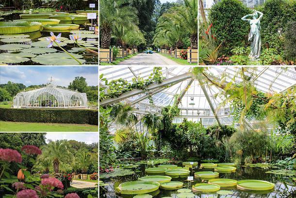 Inside the Botanic Garden in Meise, Belgium on Flemish Brabant's Green Belt