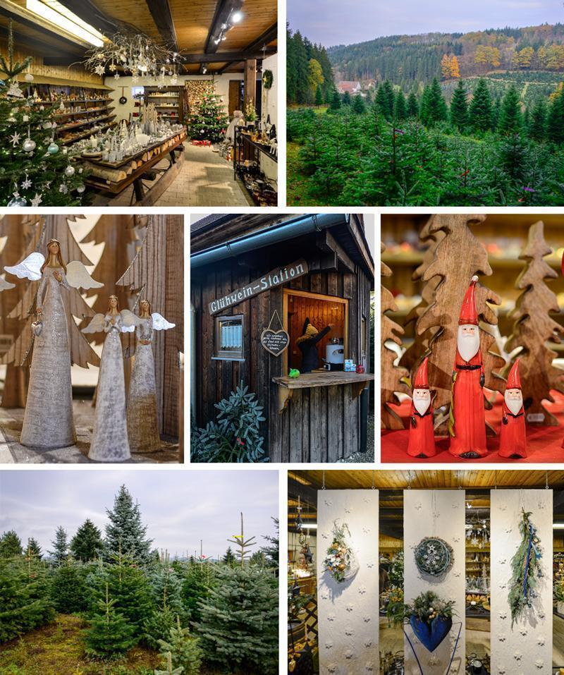 Mittelmühle in Adelberg, Germany is the best place to buy your Christmas tree and decorations