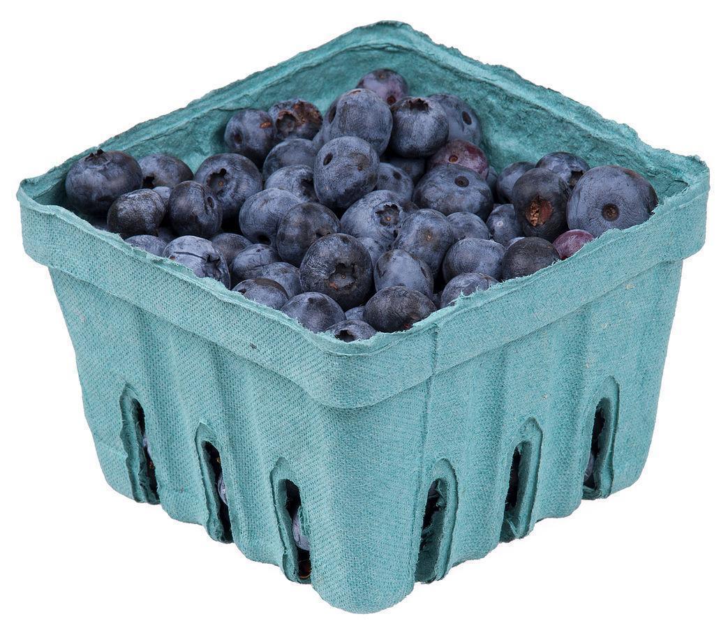 Fresh, New Brunswick Blueberries