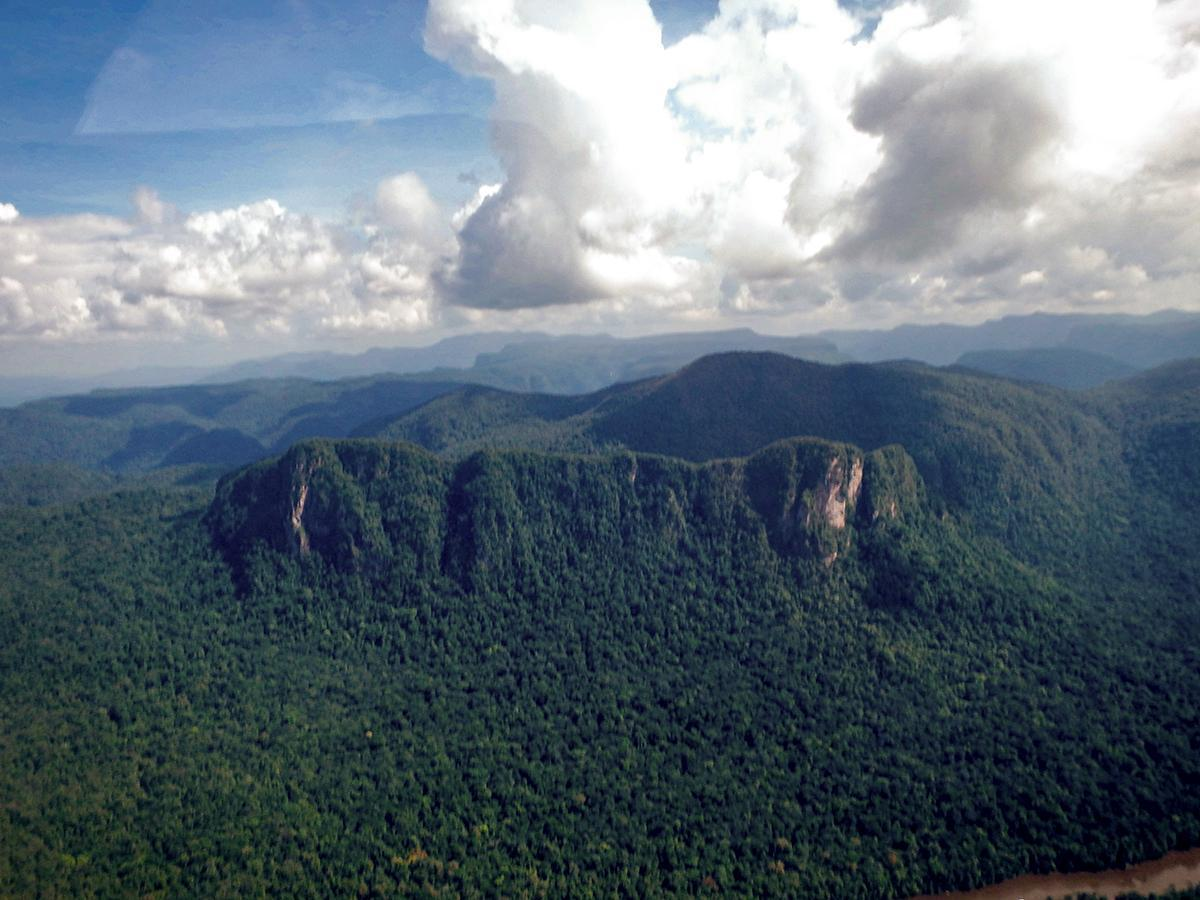 The dramatic Amazon Jungle landscape from the plane to Kaieteur Falls, Guyana