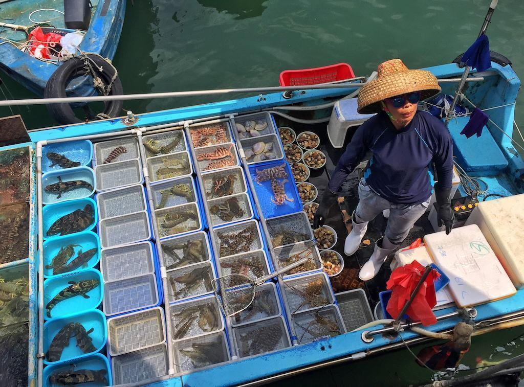 Fresh seafood in Sai Kung, Hong Kong