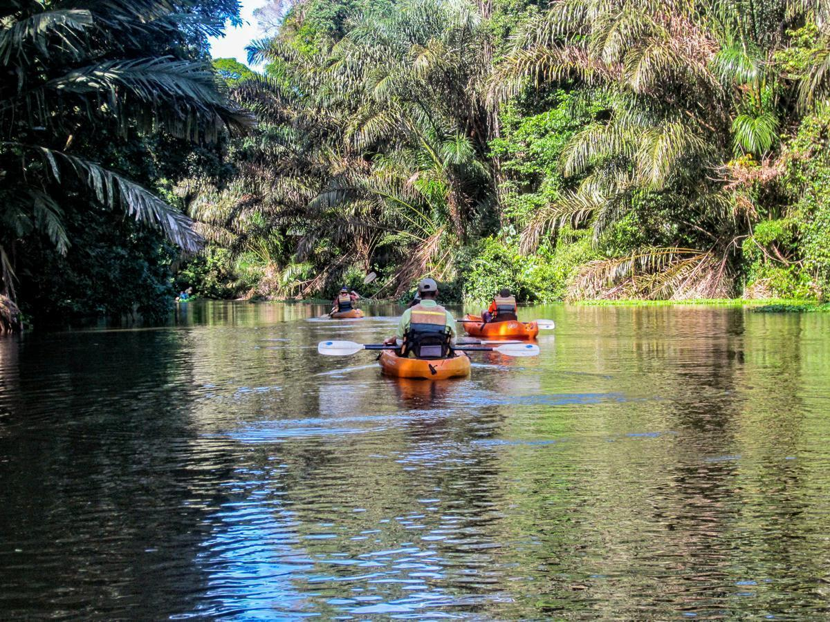Tortuguero, Costa Rica