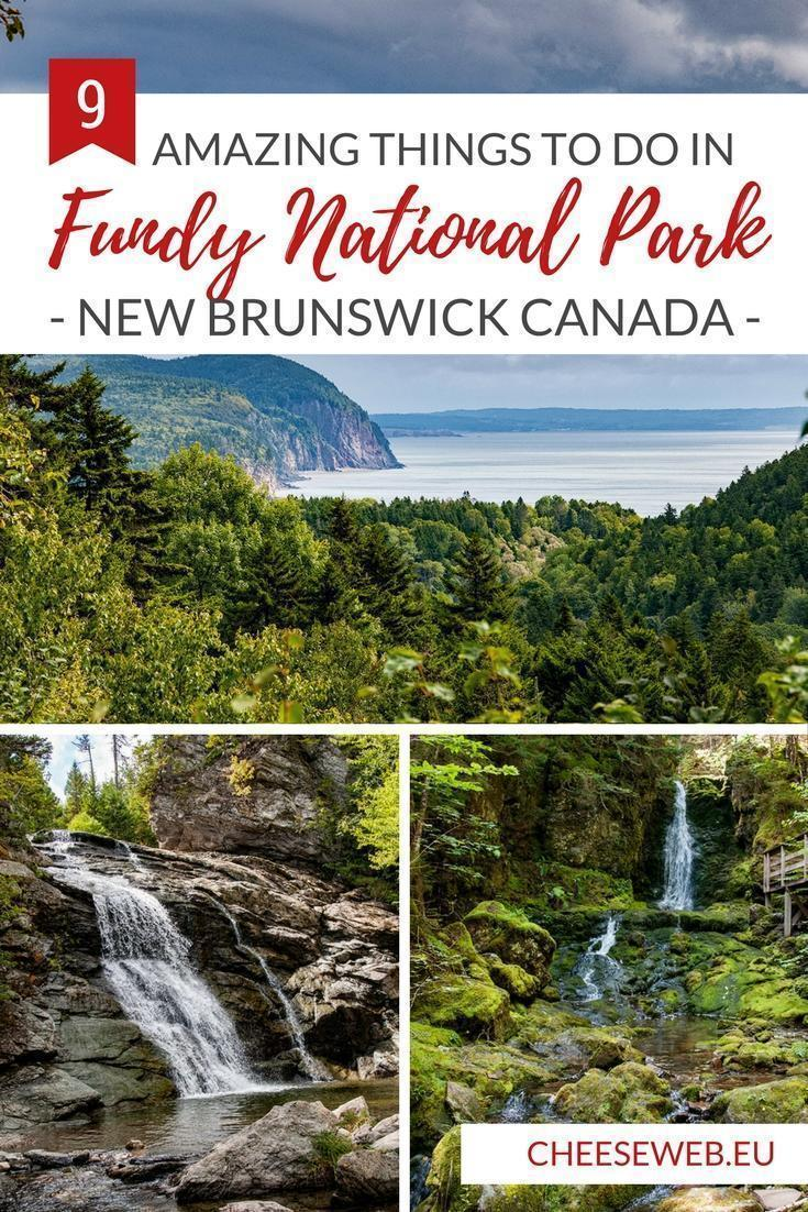 From dramatic coastlines to epic hikes, stunning waterfalls, and even covered bridges, Fundy National Park highlights the best sights New Brunswick, Canada has to offer.