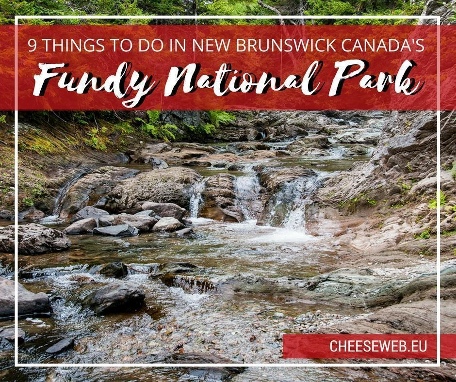 9 things to do in fundy national park new brunswick, canada