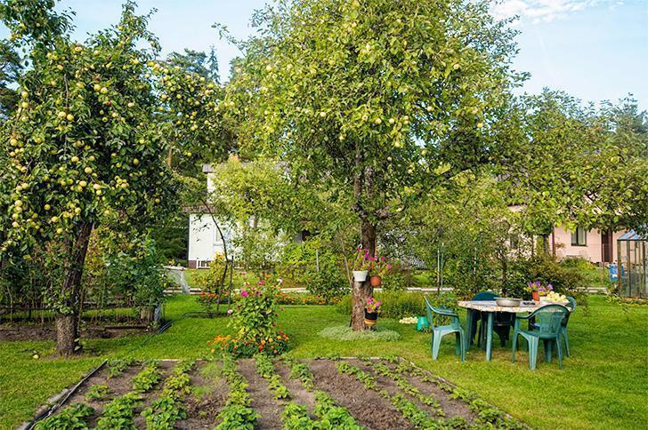 This beautiful garden in rural Latvia was the setting for some great meals and lots of trans-cultural laughter.