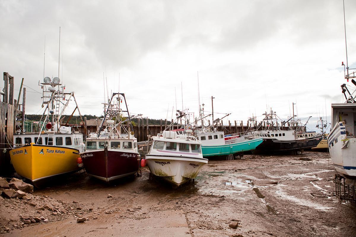 Low tide at Alma Wharf, New Brunswick