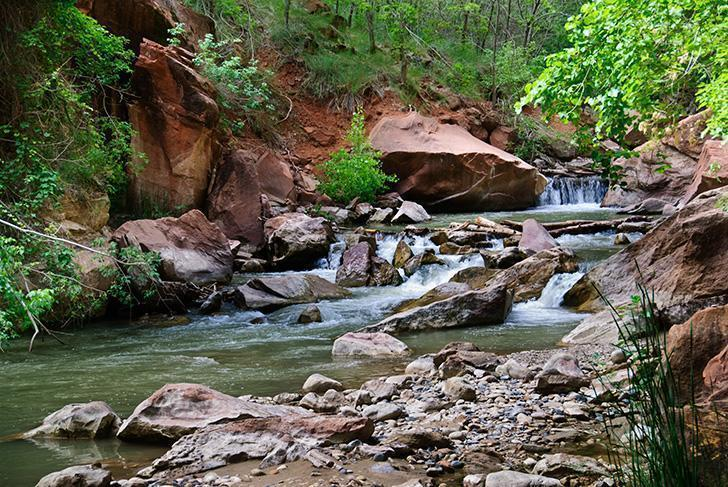 Hiking the Narrows in Zion National Park was the perfect way to spend a hot summer day.