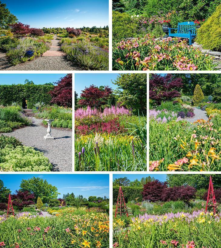 Our favourite garden at Kingsbrae was the colourful Perennial Garden