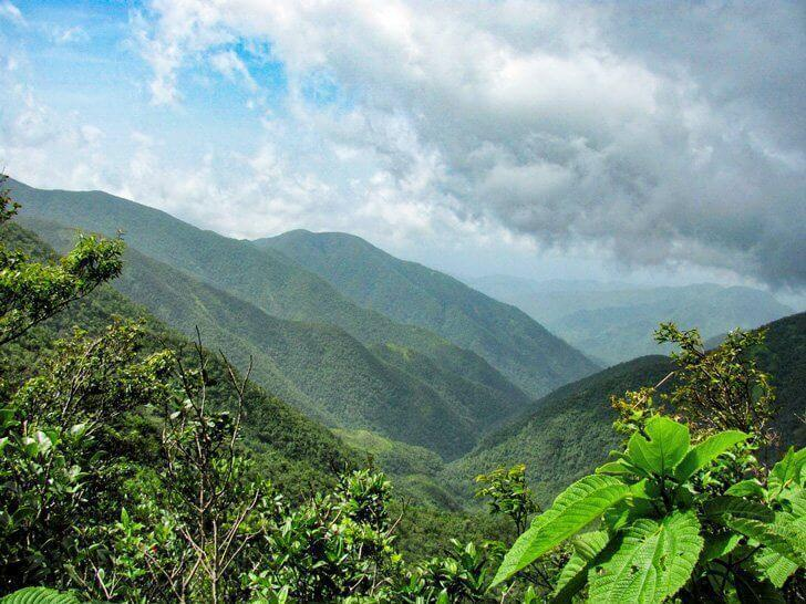 Hike to the top of Jamaica's Blue Mountain for spectacular views