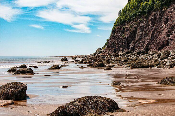 Explore the stunning Fundy Trail Parkway in St. Martin's New Brunswick