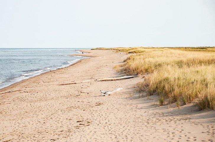 Enjoy the white sandy beaches of the Acadian Coast.