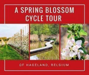 Adrian shares a slow travel cycle trip to discover Belgium's Hageland area of Flemish Brabant including stops at a winery, ice cream shop, Het Vinne nature reserve, and plenty of beautiful spring blossoms.