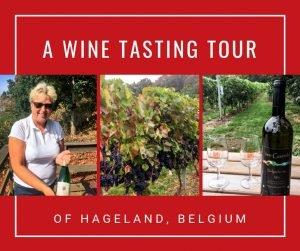 You don't have to go far for a wine tasting in Belgium. Some of the best Belgian wine is found less than an hour from Brussels in Flemish Brabant's Hageland region. Explore this scenic region, raise a glass, and enjoy lunch at a Belgian castle. Cheers!