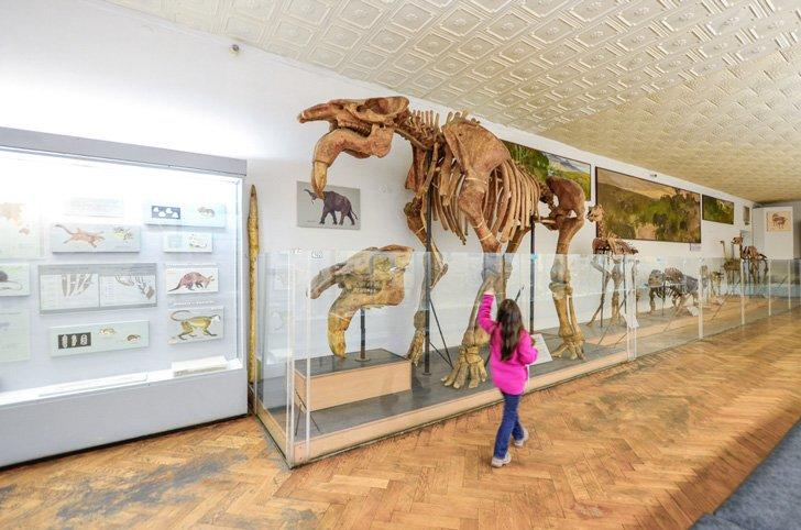 Kids enjoy the National Museum of Natural History in Kiev, Ukraine