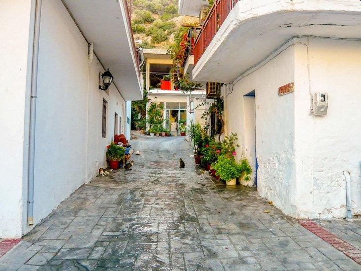 Spent a day exploring Agia Galini before heading out on some day trips in Crete