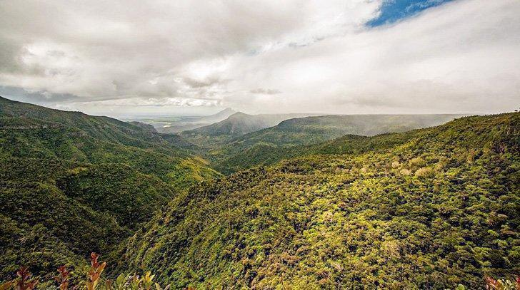One of the best places to see in Mauritius is Black River Gorges National Park.