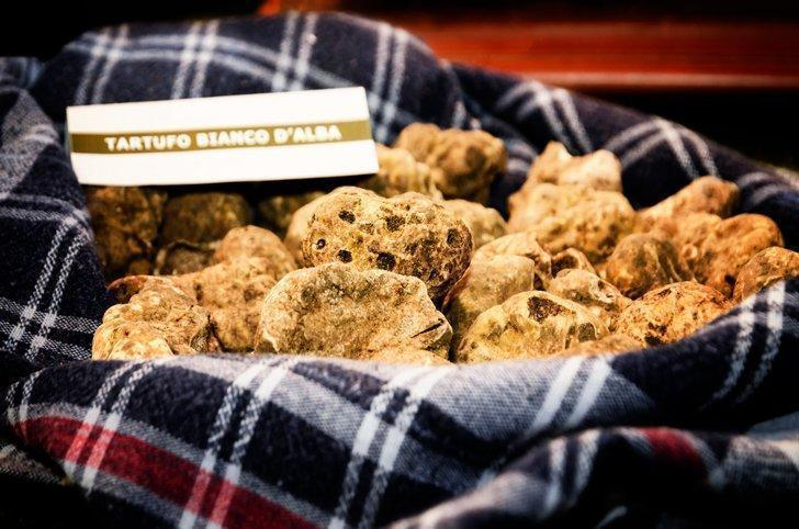 White truffles from Alba are one of the many amazing Piedmont Italy food specialities to try.