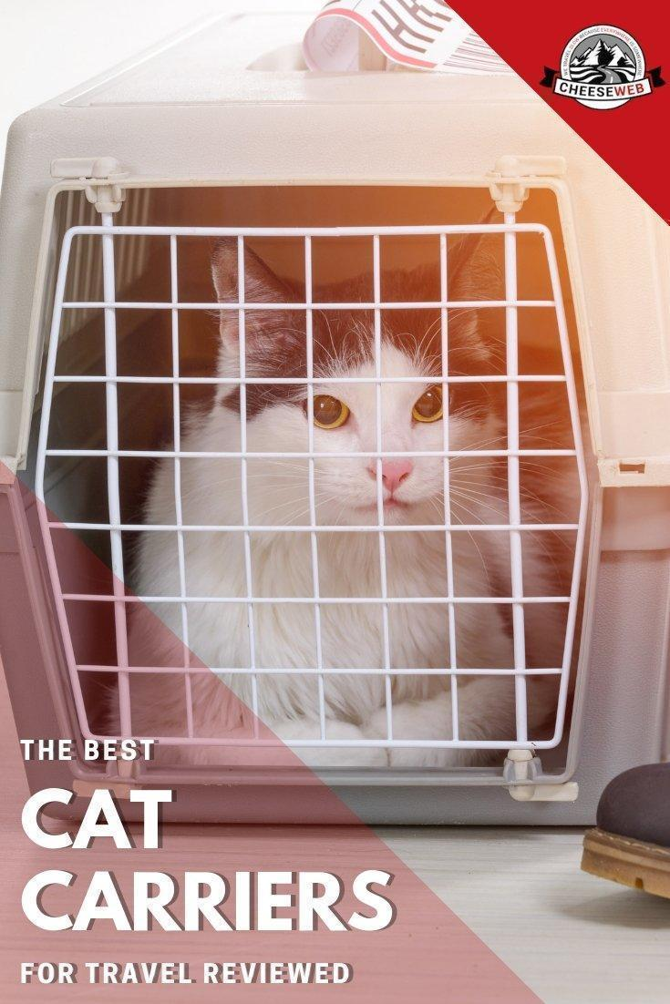 After 20 years of travel with cats, we share our reviews of the best cat carriers for travel with your feline friends from airline approved pet carriers to cat carrier backpacks we have you and your furry friend covered.