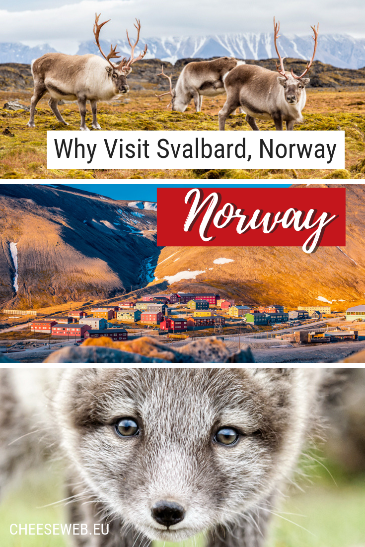 In the Svalbard archipelago, Spitsbergen is a northern Norwegian hotspot for wildlife and nature enthusiasts. We share the best things to do in Spitsbergen.