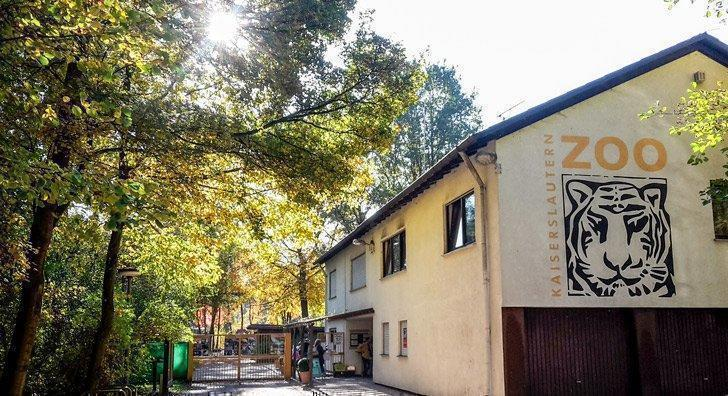 There are more than 130 species of animals to visit at the Kaiserslautern Zoo near Ramstein